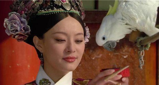 「《甄嬛傳》連寵物都藏了秘密?」皇后養貓,甄嬛養鸚鵡,這個嬪妃的寵物最特別…. – 我們用電影寫日記