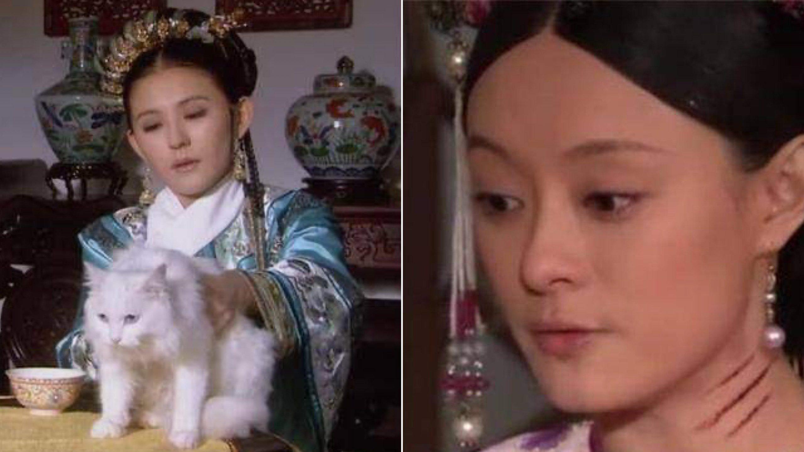 皇上因為貓抓傷甄嬛,禁止宮中養貓,為什麼寧貴人卻可以養貓?—《甄嬛傳》—我們用電影寫日記